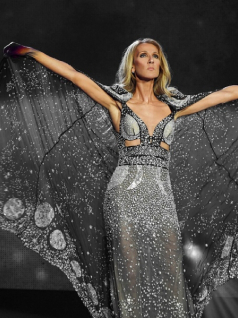 Celine Dion European Tour